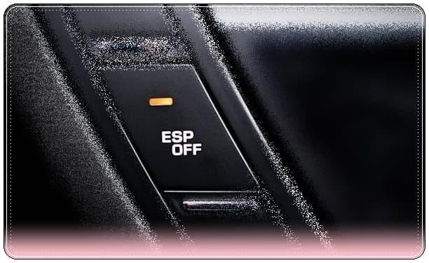 ESP Nedir, Ne İşe Yarar, Nasıl Çalışır?